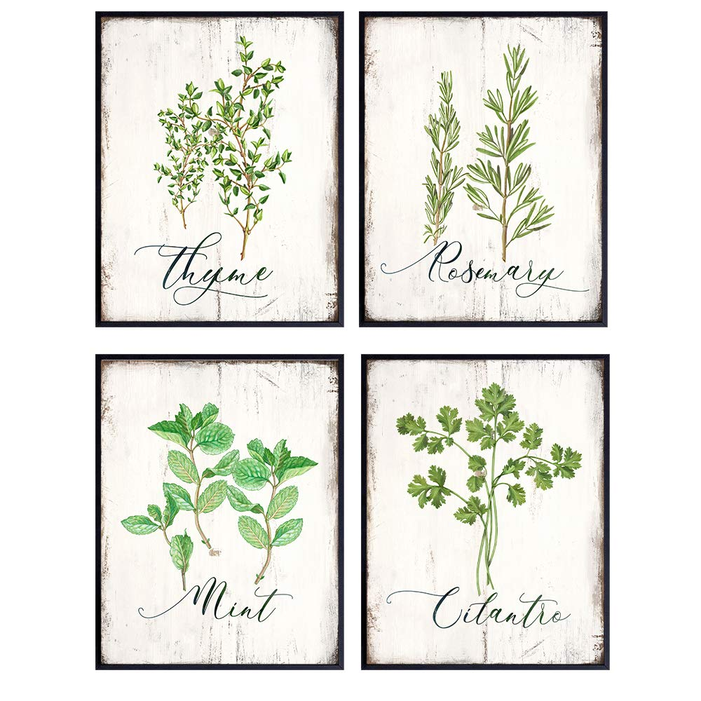 Botanical Herbs and Spices Kitchen Decor - Dining Room Decor - Larousse Gastronomique Wall Art for Cafe, Restaurant - Gift for Cooks, Chefs - Rustic Vintage Wood Sign Photo Decoration - 8x10 UNFRAMED