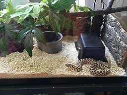 Amazon Com Zoo Med Natural Cork Tile Background 12 X 18