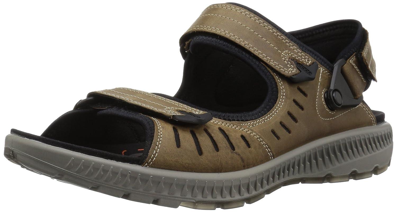 ECCO Men's Terra 2S Athletic Sandal B0727SDPXD 42 EU/8-8.5 M US|Navajo Brown
