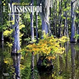 Mississippi, Wild & Scenic 2017 - 12inch x 12inch USA Hanging Square Wall Photographic America State Nature Planner Calendar