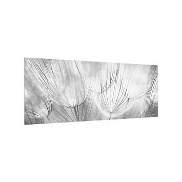 Bilderwelten Spritzschutz Glas Pusteblumen Schwarz Weiss Panorama
