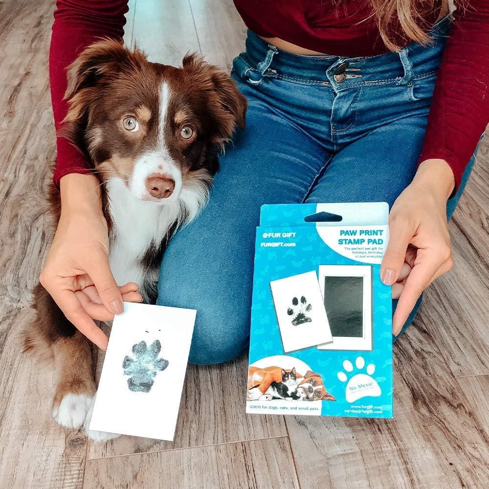 Pet Memorial Keepsake No-Mess Ink Pad FUR GIFT Paw Print Stamp Pad Small Pets 100/% Pet Safe Pet Owner Pet Paw Print Kit Dogs Nose Print Cats Imprint Cards Pet Memory Project