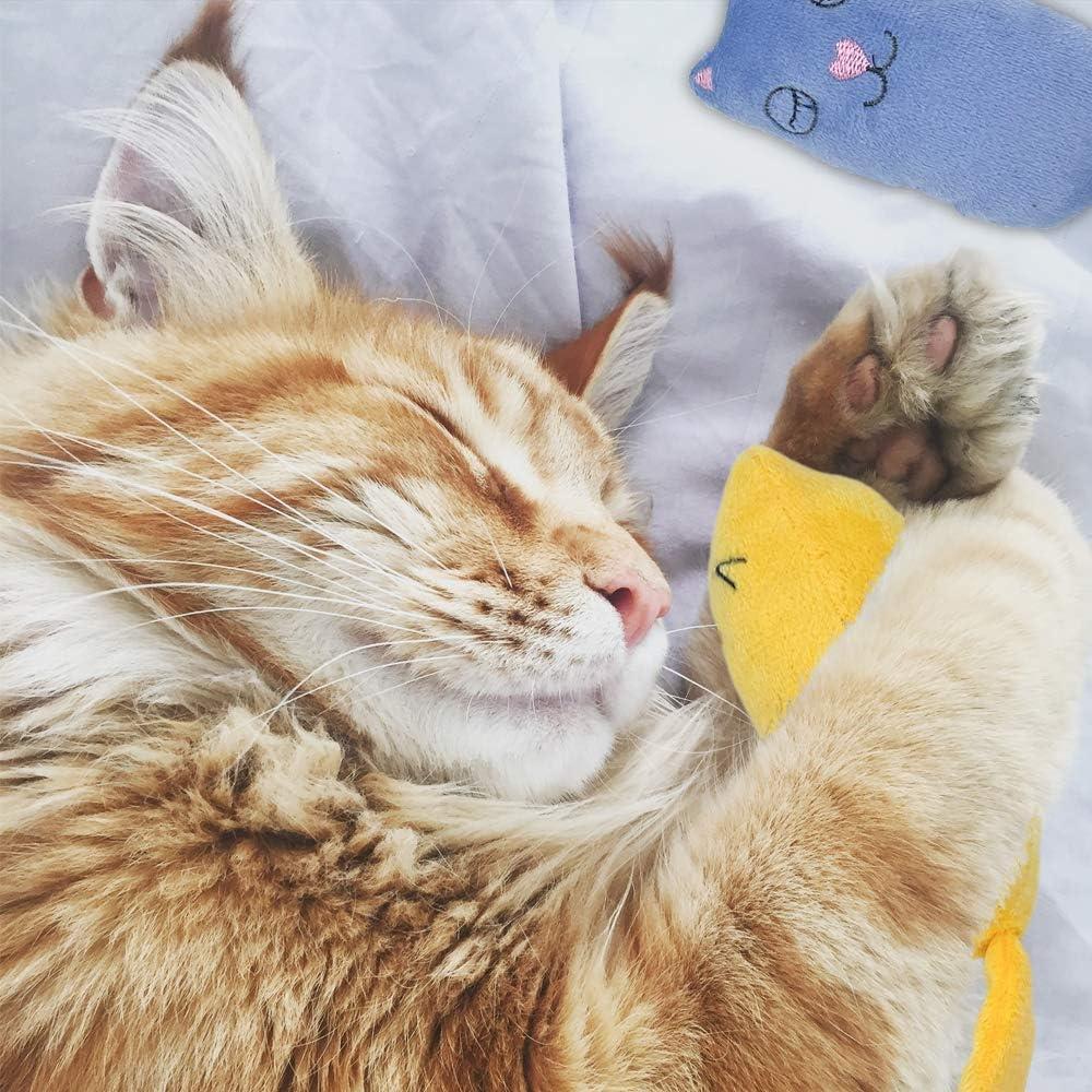 Lurranzo 3Pcs Catnip Toys Natural Catnip Cat Chew Toy Bite Resistant Catnip Pillows for Cats