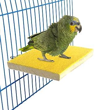 Pet Bird Cage Perch Stand Platform Paw Grinding Stand Parrot Parakeet Bird Toys