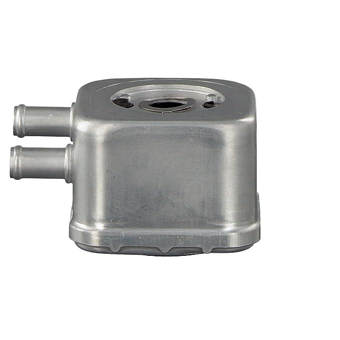 Febi-Bilstein 36117 Radiador de aceite, aceite motor: Amazon.es: Coche y moto