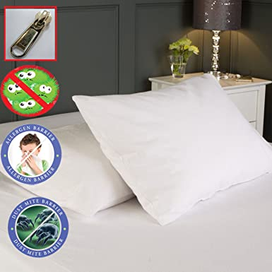 AAF Bed Bug Saver Mattress Cover Zippered Anti Allergy, Anti Dust Mite, Pet  Dander: Amazon.co.uk: Clothing