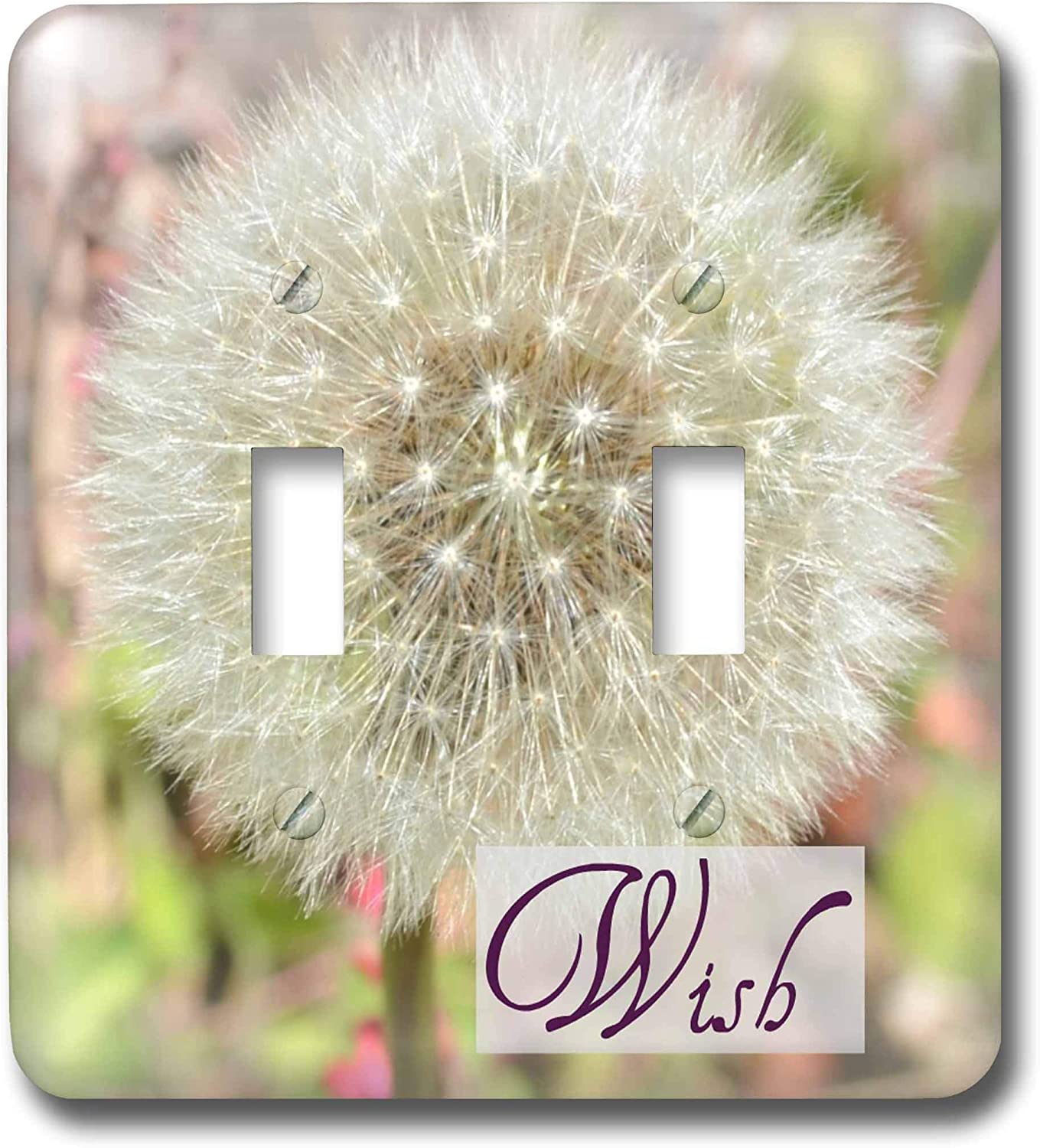 3drose Lsp 31469 2 Dandelion Wish Inspirational Quotes Flowers Toggle Switch Multi Color Switch Plates