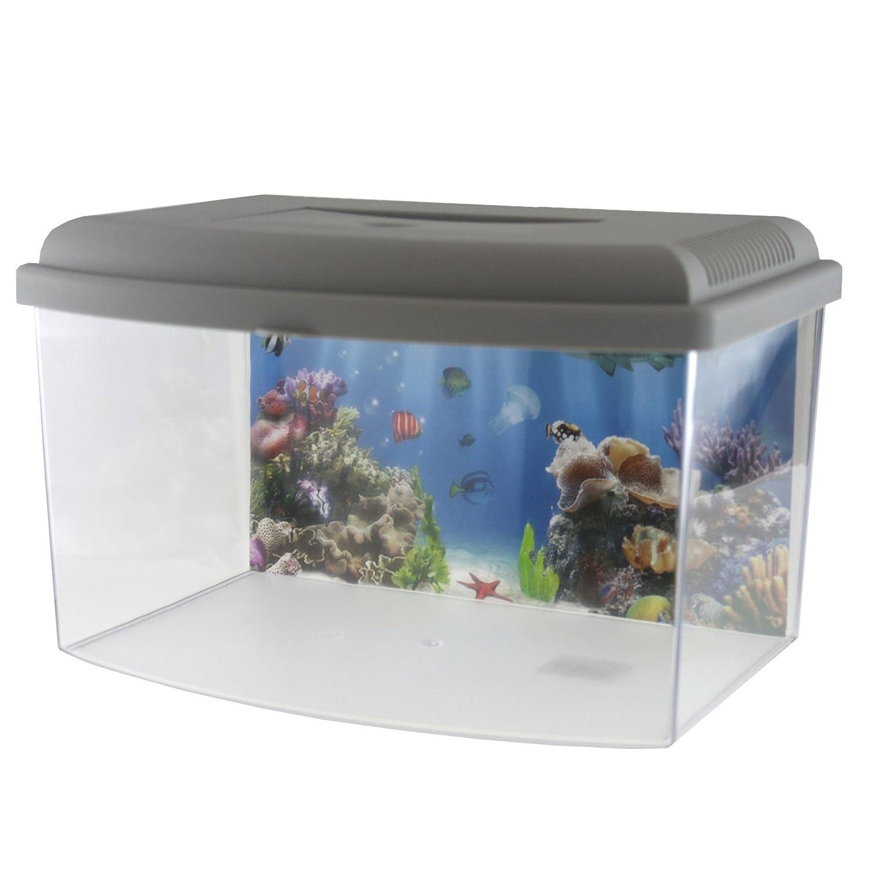 GEORPLAST Acquario con coperchio 5, 5litri–: 5litri-