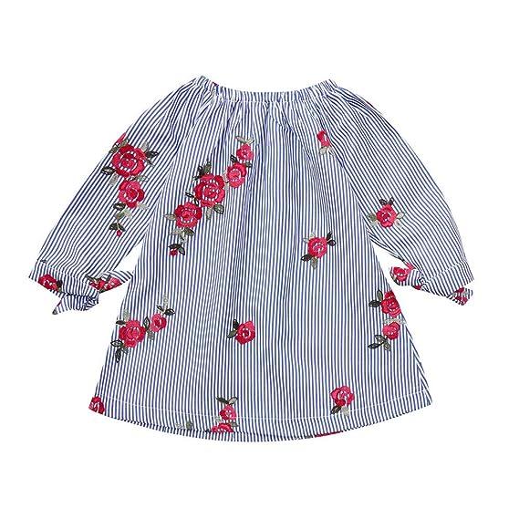 Ropa Bebe niña,(6M-3T) Vestido de Princesa Vestido de Flores Bordado a Rayas de Manga Larga para niños: Amazon.es: Ropa y accesorios