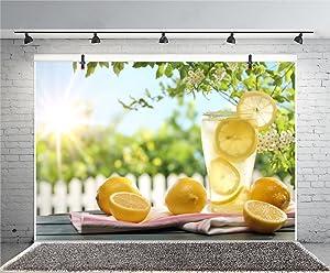 Leyiyi 10x8ft Photography Background Lemon Juice Backdrop Leisure Afternoon Tea Bokeh Garden Apple Tree Blossom Vintage Wooden Tabe Garden Fence Glass Sunshine Photo Portrait Vinyl Studio Video Prop