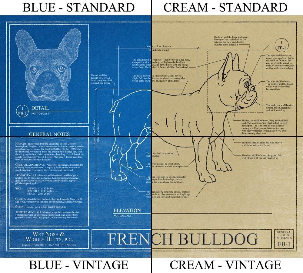 Amazon boxer dog blueprint handmade malvernweather Gallery