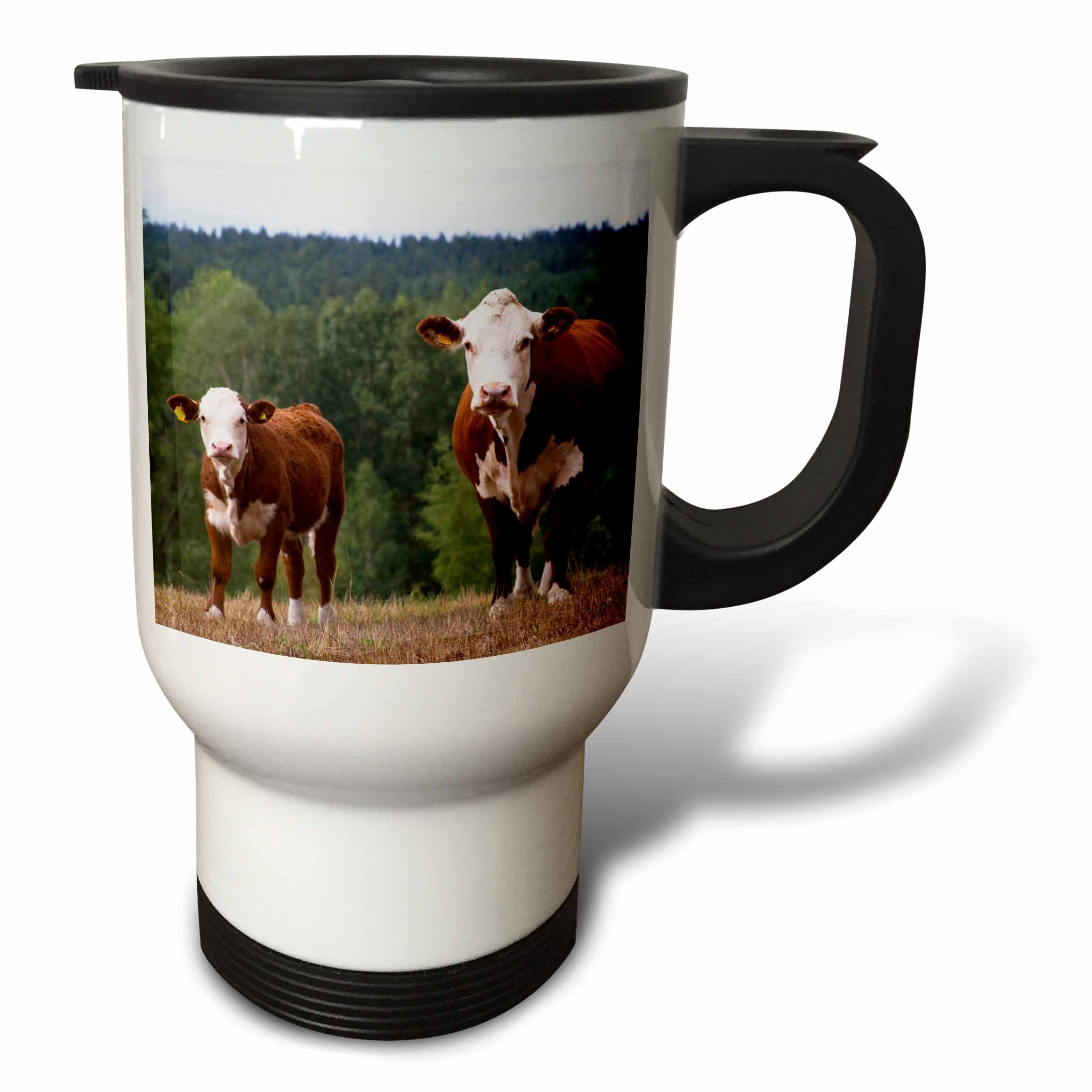 3dRose tm_82607_1'' Calf Cow Brown and White Smaland, Sweden-EU28 PKA0117-Per Karlsson Stainless Steel'' Travel Mug, 14 oz, Multicolor by 3dRose