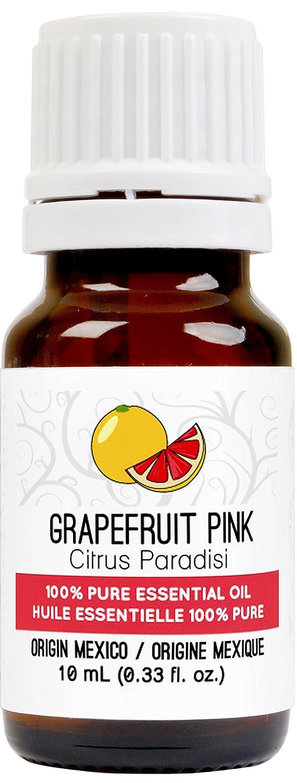 Grapefruit Essential Oil Pink 0 33 Image 1