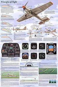 (24 x 36) Principles of Flight Poster