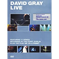 David Gray - Live at the Point