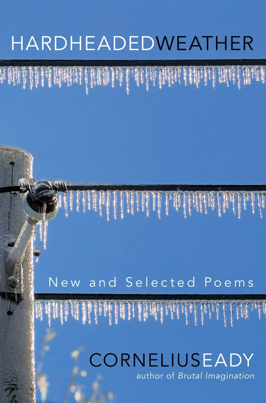 Download Hardheaded Weather: New and Selected Poems ebook