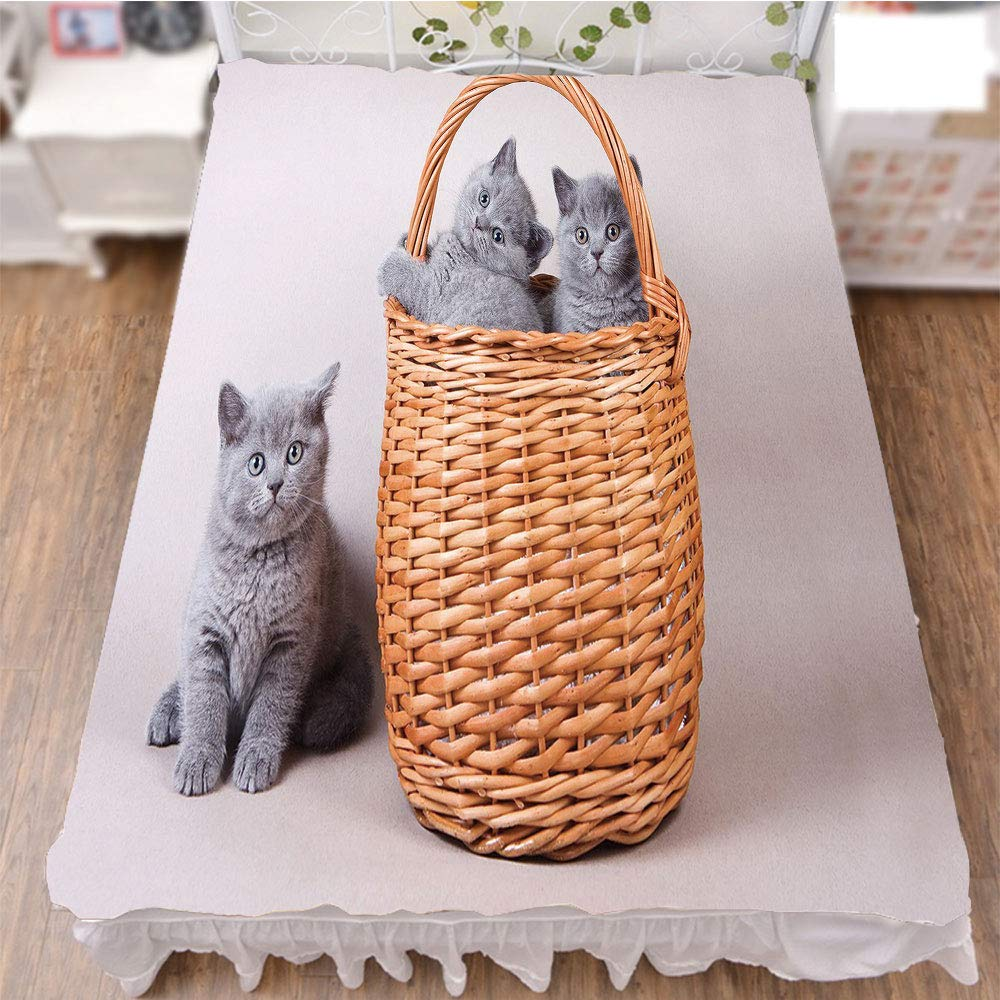 iPrint Bed Skirt Dust Ruffle Bed Wrap 3D Print,Kitties in Basket Adorable Baby Animals Fluffy Pets,Fashion Personality Customization adds Color to Your Bedroom. by 70.9''x94.5''