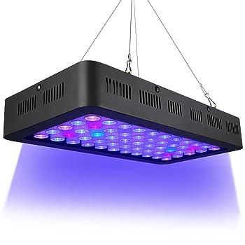 Best LED Lighting for Reef Tanks - 2018 Reviews & Guide