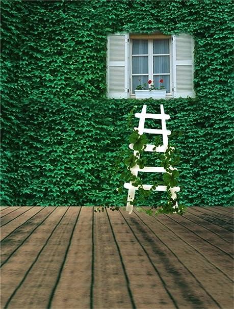 aaloolaa fotografía foto de fondo Fondos boda Vivid follaje Vines Pared Escalera suelos de madera los