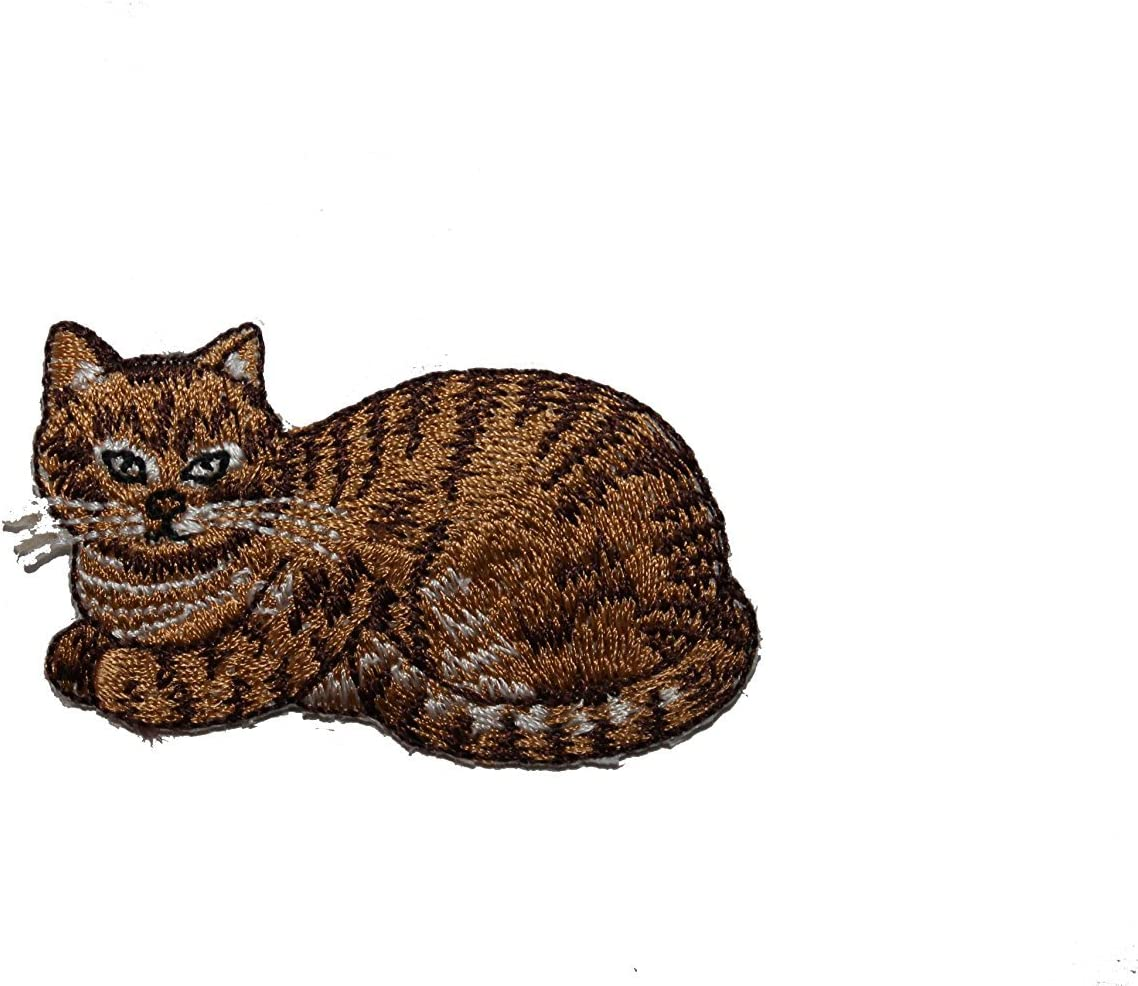 Cat /& Kitten Iron On Embroidered Patch Cats Kitty Pets Tabby Animals