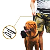 OneTigris Reflective Waist Leash with EDC Pouch for Small to Medium Dog Walking Training