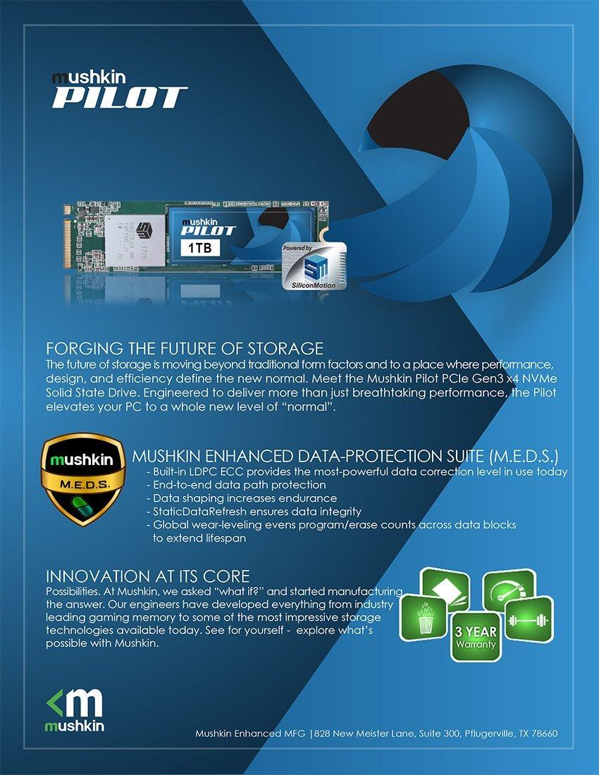 Mushkin Pilot - 250GB PCIe NVMe - M.2 (2280) Interno Unidad de ...