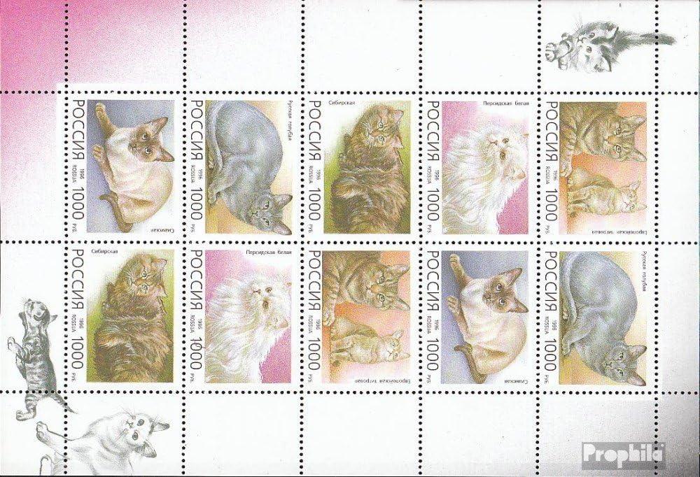 1996 Chats de Races Timbres pour Les collectionneurs Russland 485-489 Feuille Miniature Chats compl/ète.Edition.