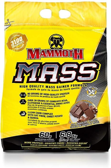 Interactive Nutrition Mammoth Mass Rich Chocolate - 6800 gr
