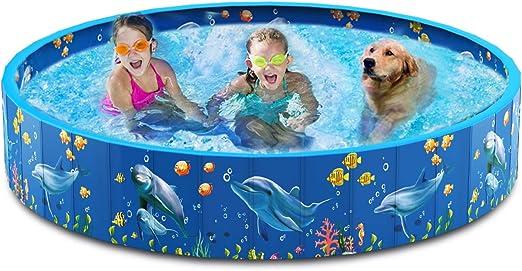 Dycsin - Piscina plegable de plástico duro de PVC para mascotas para perros grandes y niños al aire libre portátil plegable: Amazon.es: Productos para mascotas