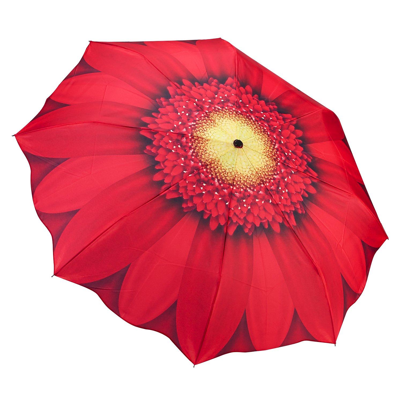 Galleria auto plegable de apertura y cierre paraguas - Red Daisy: Amazon.es: Equipaje