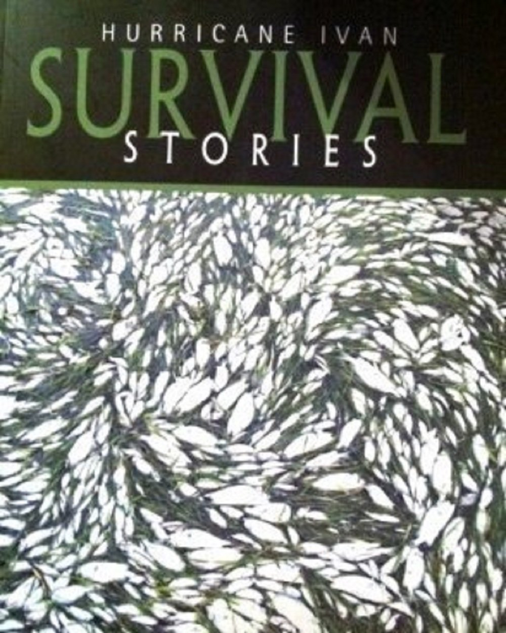Hurricane Ivan Survival Stories as Told by the People of the Cayman Islands ebook
