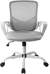SMUGDESK Ergonomic Office Lumbar Support Mesh Computer Desk Task Chair with Armrests, Gray