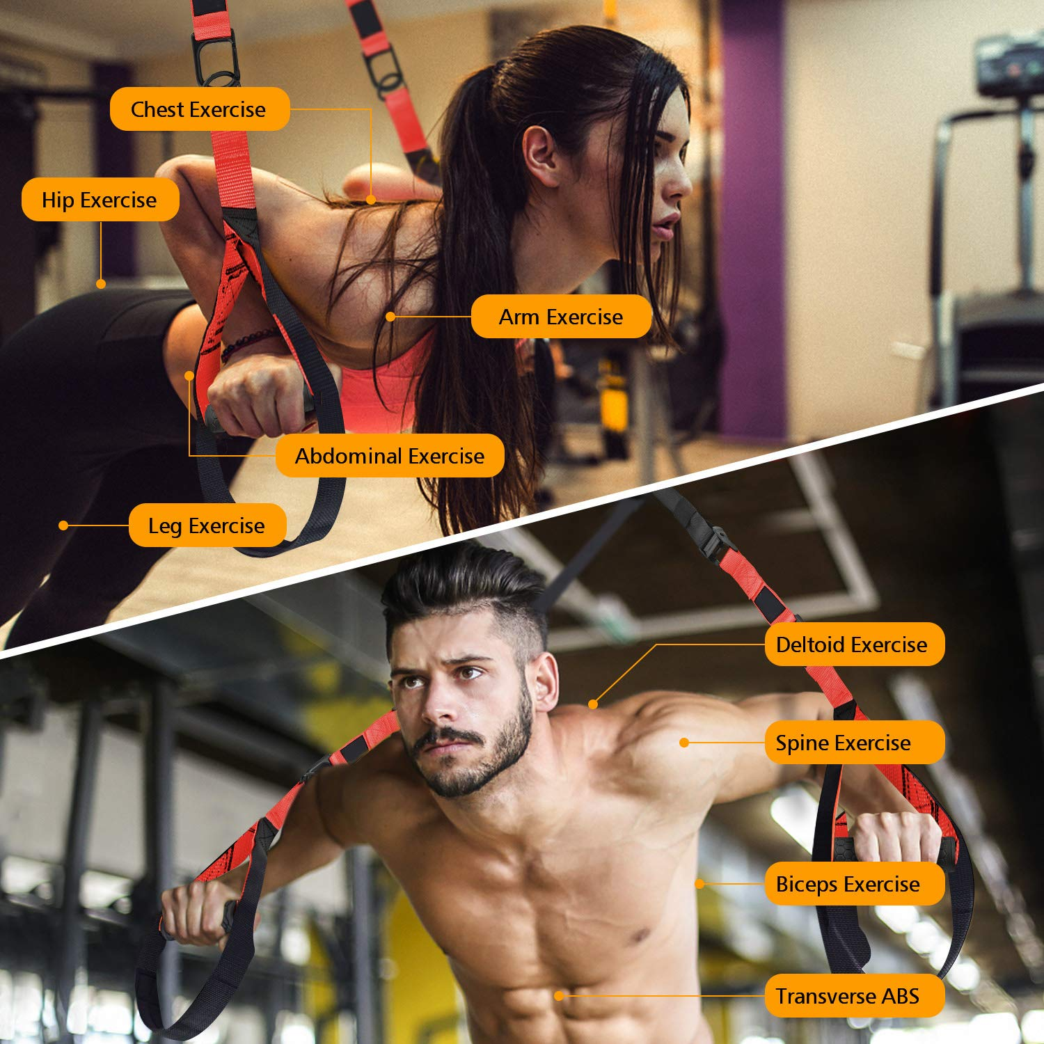 Complete Home Gym Fitness Trainer kit for Full-Body Workout Extension Strap 16 Week Program Included Door Anchor Fitness Guide NMVB Bodyweight Resistance Training Straps