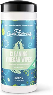 product image for Aunt Fannies Vinegar Wipes Eucalyptus, (Single Pack, 35 Count)