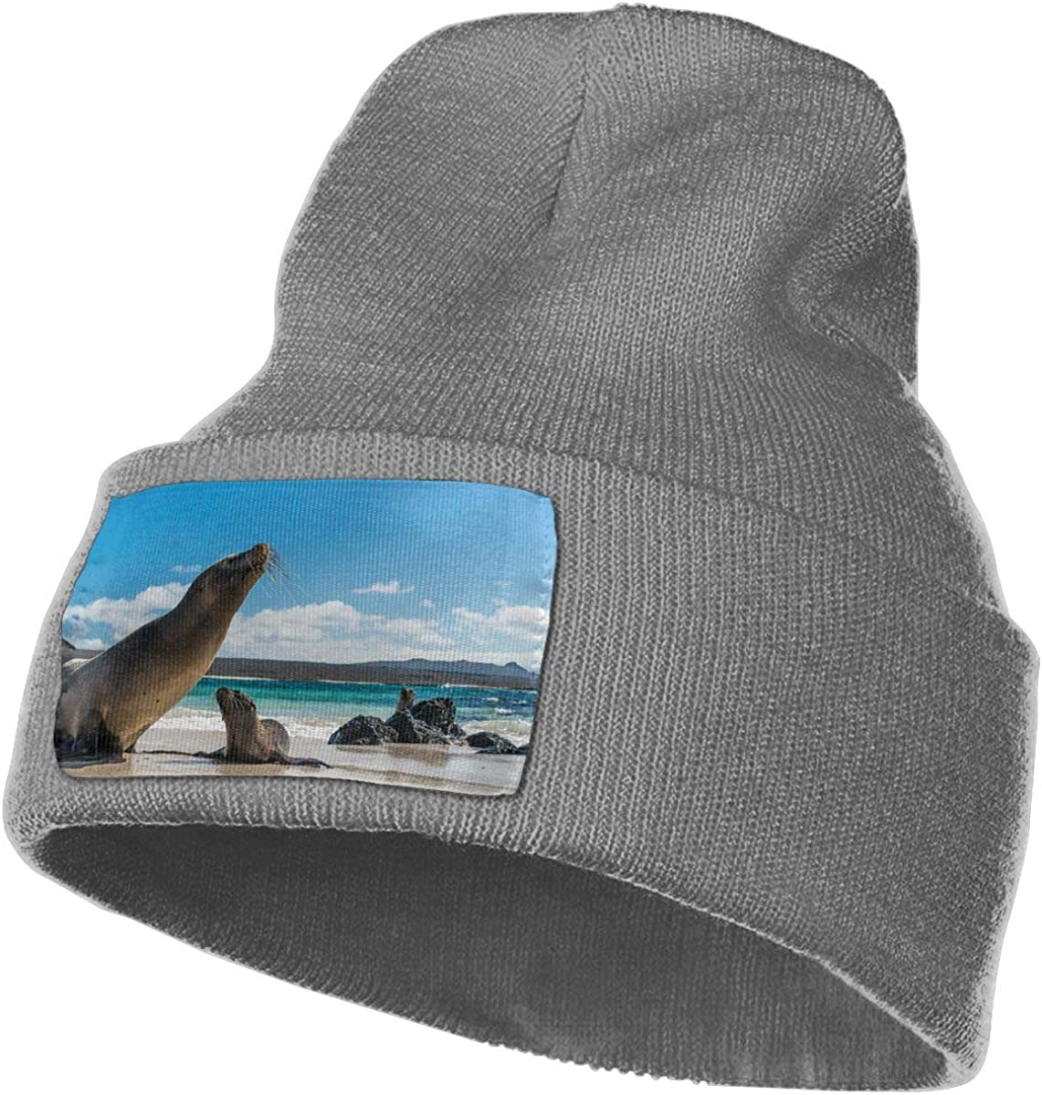 TAOMAP89 Sea Lion Women and Men Skull Caps Winter Warm Stretchy Knit Beanie Hats