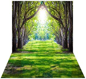 Allenjoy Spring Easter Forest Grassland Backdrop for Pictures Nature Sunshine Tree Wall Decor Photography Background 5x7ft Grass Newborn Baby Shower Kids Selfie Photoshoot Banner Photo Booth Props