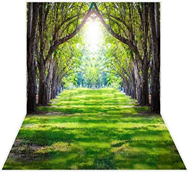 Photo Background Cloth Wall Backdrop Prints Decor Forest Road