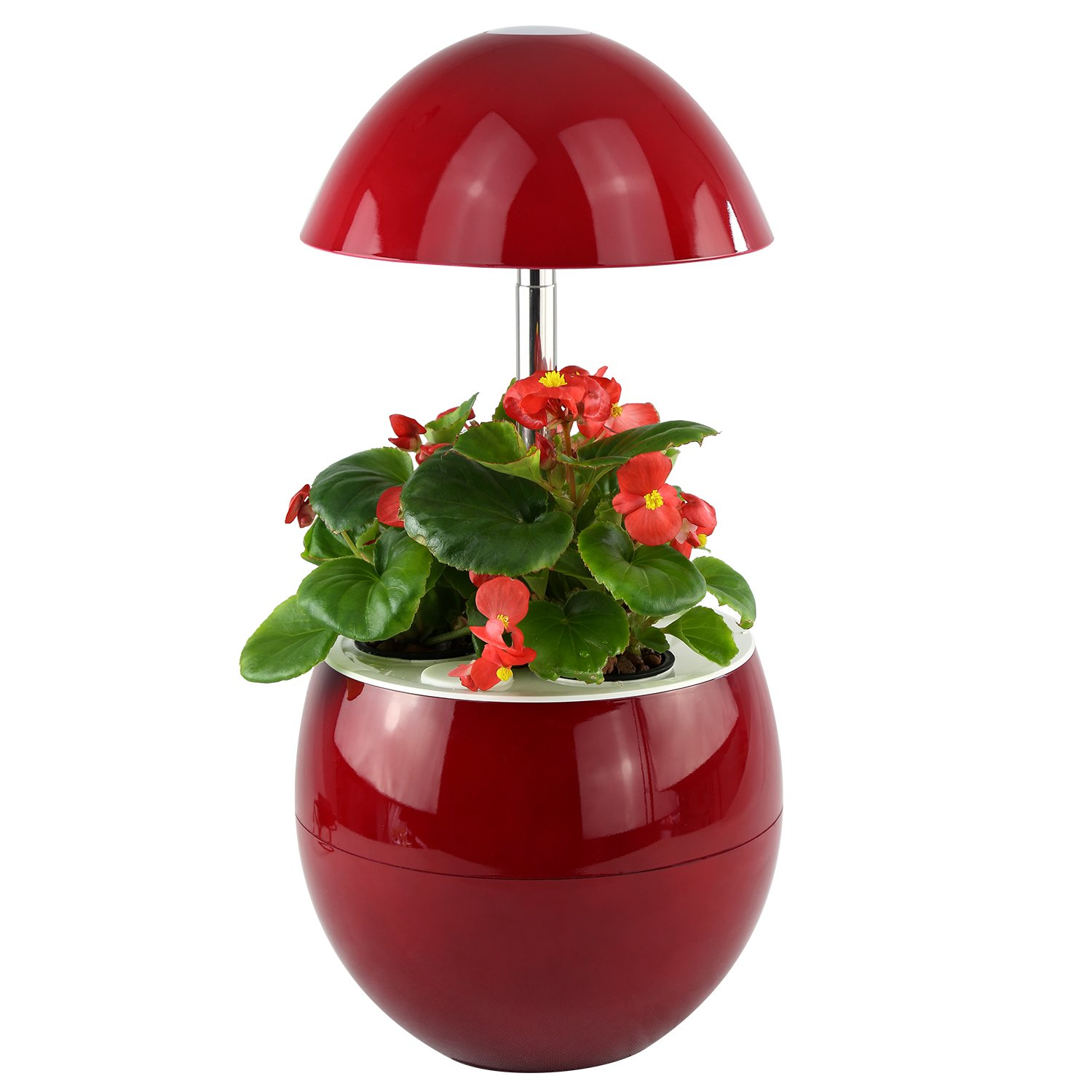 Decorative Indoor Garden Lamp Hydroponic Self Watering System, Complete Planter Pod Kit, Seeds & Led Light Grows Herbs, Flowers, Succulents in Kitchen or Any Room by Domestic Diva LA (Red) by Domestic Diva LA