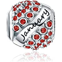 Forever Queen Birthstone Charms fit Pandora Charms Bracelet- 925 Sterling Silver Bead Charms, Happy Birthday 12 Colors Jan-Dec Openwork Charms for Bracelet and Necklace FQ0004