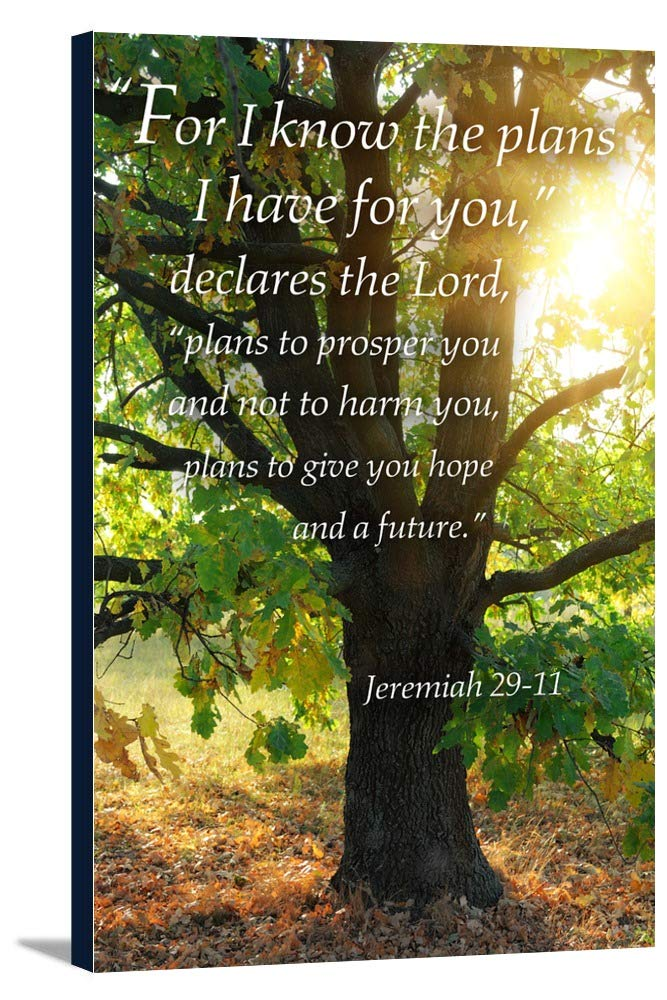 Jeremiah 29 : 11 – インスピレーション 24 x 36 Gallery Canvas LANT-3P-SC-47111-24x36 24 x 36 Gallery Canvas  B0184B1KXC