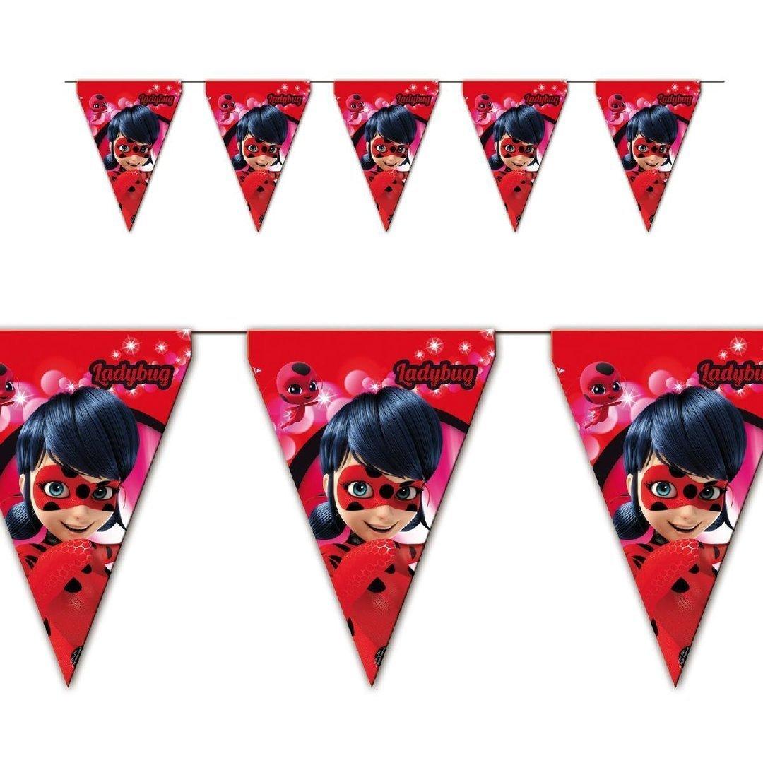 Ladybug Mariquita y chat noir coordinato Niños Cumpleaños ...