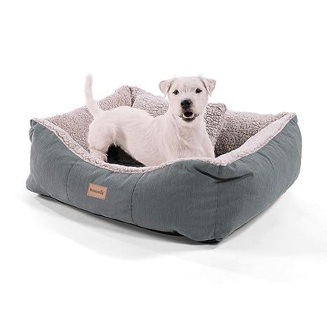 Homeoutfit24 Lucky - Cesta para perro | lavable | cama con ...
