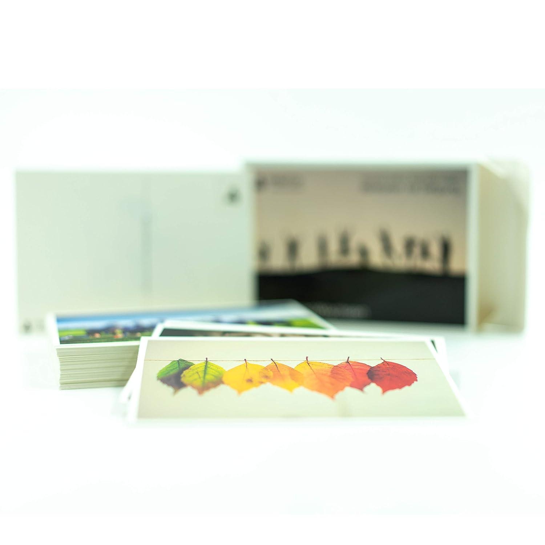 Cartoline Set di 52 carte Immagini intensive Domande potenti come per prestazioni Inglese consapevolezza o terapia. metaFox Deep Pictures GROW TOGETHER