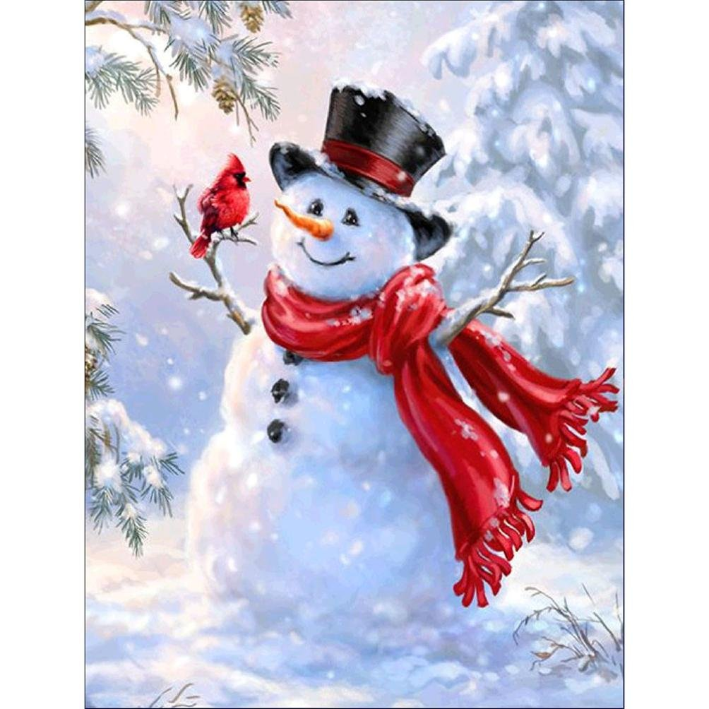 5D DIY Diamond Painting, Lisin 5D Diamond Rhinestone Pasted Embroidery Painting Cross Stitch Home Decor Art Gift Wall Sticks, Christmas Snowman (A, 24X30cm)
