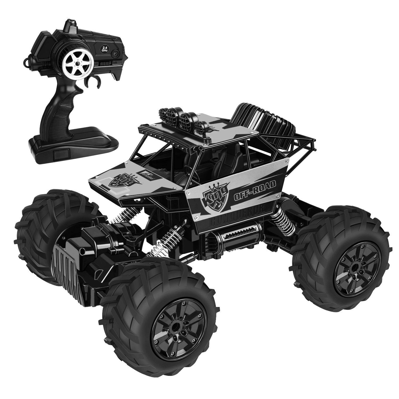 Amzdeal RC Auto ferngesteuertes Auto 4WD für jedes Terrain und im ...