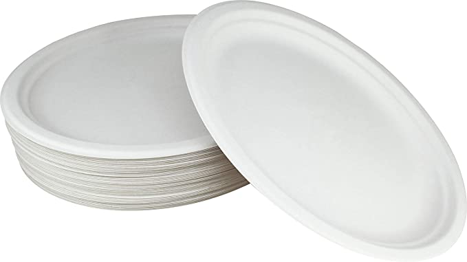 100 Compostable White Oval 12 5 Inch Paper Platters 60 Plates Heavy Duty Premium Quality Disposable Dinner Plate Amazon Ca Home Kitchen
