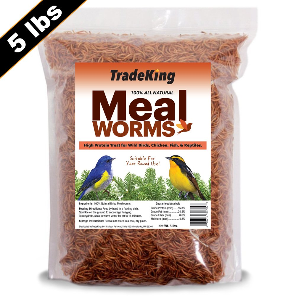 TradeKing 5 lb Dried Mealworms | High Protein Treat For Wild Birds, Chicken, Reptiles (Resealable Bag) - Veterinary Certified