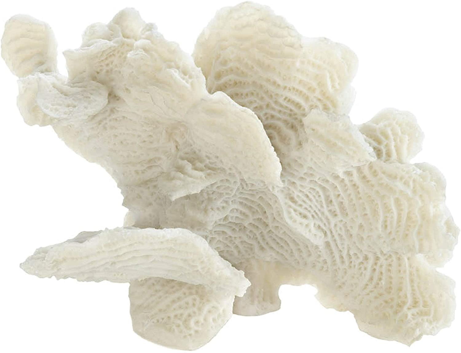 Accent Plus Large White Coral Tabletop Decor 9.25x4.5x6.5""