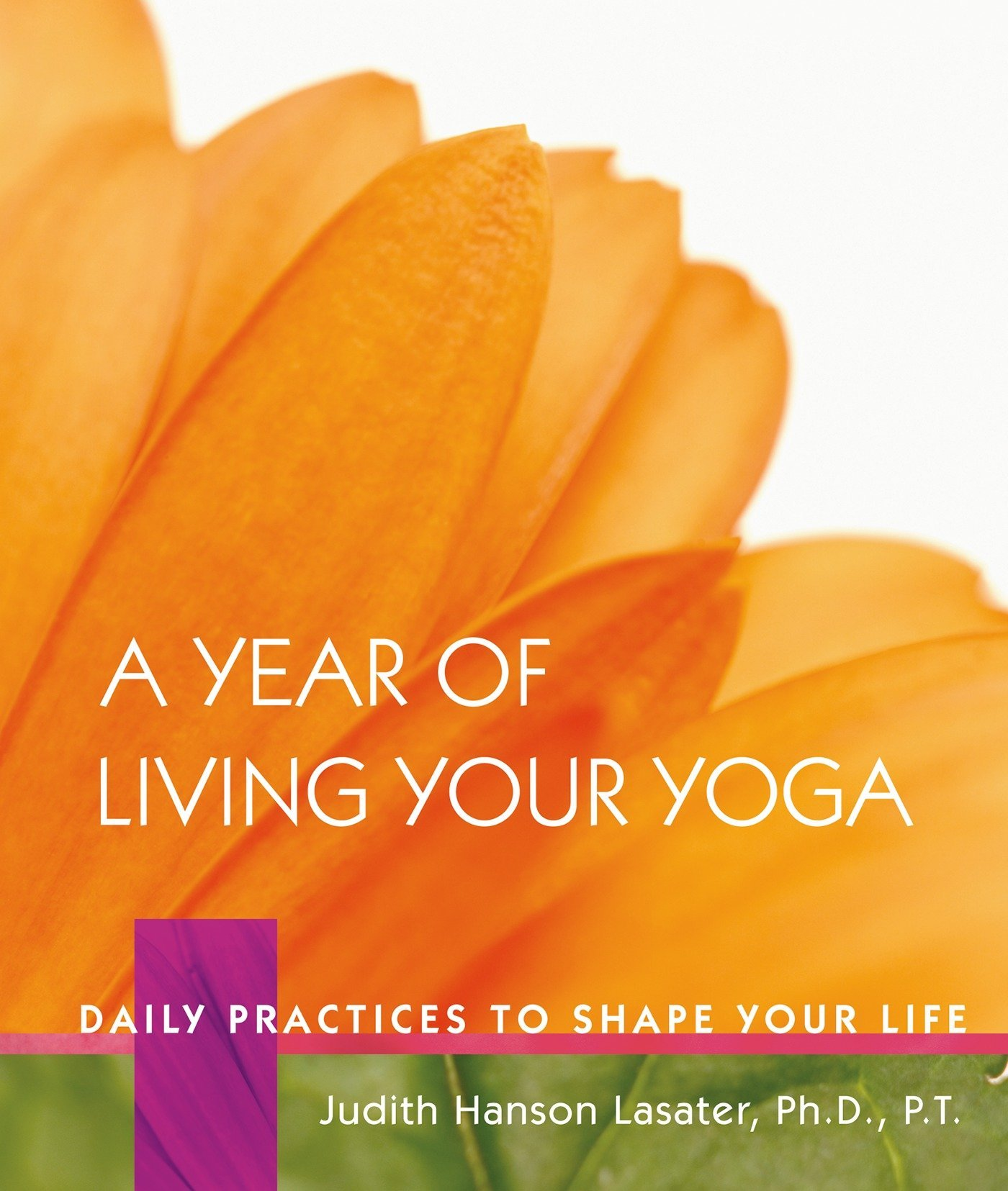 Download A Year of Living Your Yoga: Daily Practices to Shape Your Life pdf