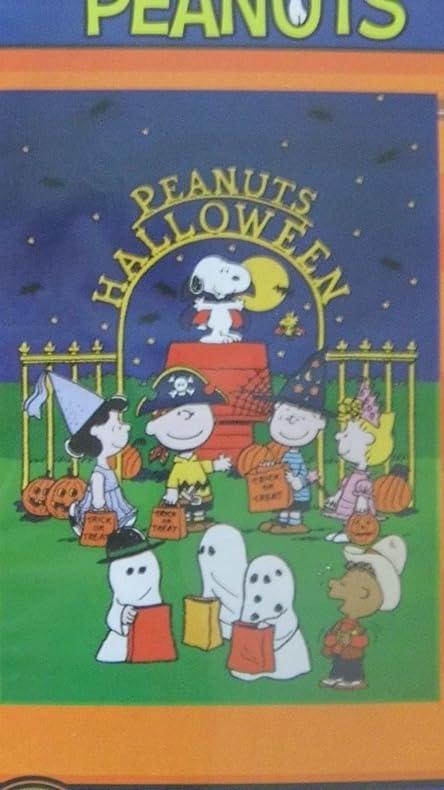 Amazon.com : Peanuts Halloween Large Flag Snoopy & The Gang Tricks ...